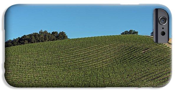 California Vineyard iPhone Cases - California Hillside Vineyard iPhone Case by Mountain Dreams