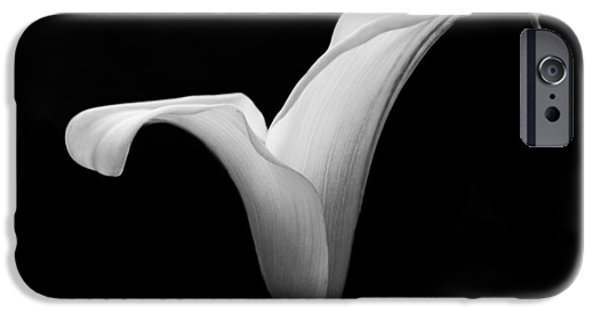 Innocence iPhone Cases - Calla Lily iPhone Case by Clare Bambers