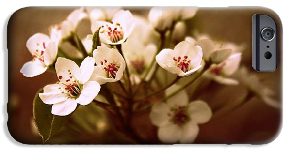 Pears Digital iPhone Cases - Callery Pear iPhone Case by Jessica Jenney