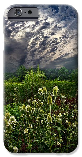 Storm iPhone Cases - Calling Home iPhone Case by Phil Koch