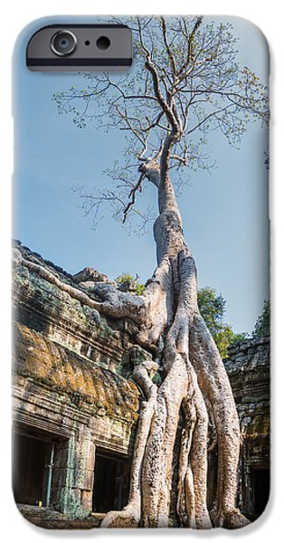Tree Roots iPhone Cases - Cambodia Angkor Wat Tree Roots iPhone Case by Cory Dewald