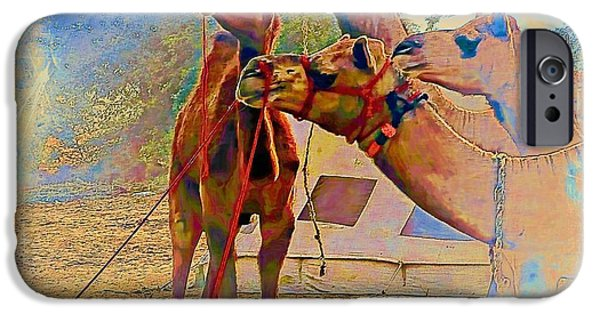 Racing iPhone Cases - Camels Hanging Out India Rajasthan Desert 6a iPhone Case by Sue Jacobi