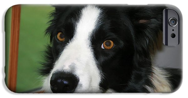 Animal Photography Mixed Media iPhone Cases - Can I Go Out iPhone Case by Deborah Benoit
