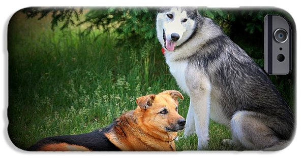 Huskies Digital Art iPhone Cases - Can we play now iPhone Case by Marjorie Imbeau
