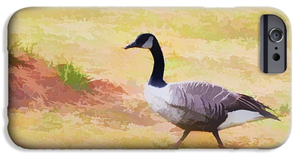 Canadian Geese Paintings iPhone Cases - Canadian geese 1 iPhone Case by Lanjee Chee
