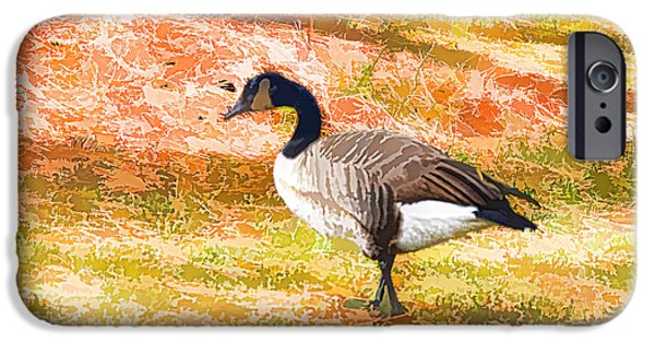 Canadian Geese Paintings iPhone Cases - Canadian geese 5 iPhone Case by Lanjee Chee