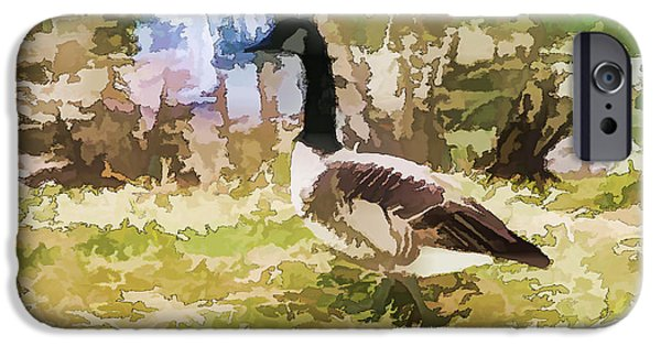 Canadian Geese Paintings iPhone Cases - Canadian geese in the park 2 iPhone Case by Lanjee Chee