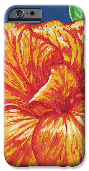 Canna Flower iPhone Case by Adam Johnson