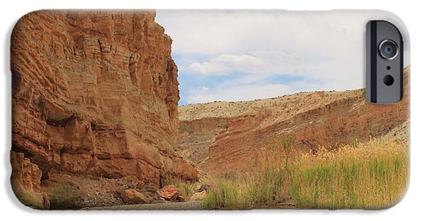 Slickrock iPhone Cases - Canyon Peacefulness iPhone Case by Tonya Hance