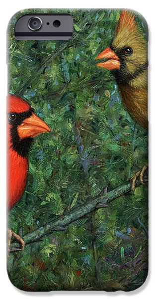 Cardinal Couple iPhone Case by James W Johnson