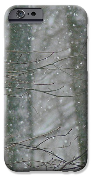Cardinals in Snow iPhone Case by Serina Wells