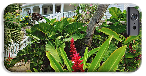 Balcony iPhone Cases - Caribbean Garden iPhone Case by Ingrid Zagers