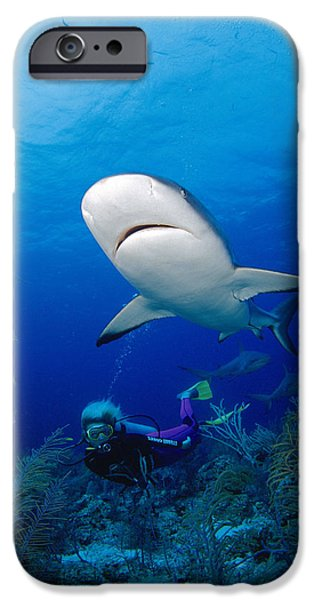 Adrenaline iPhone Cases - Caribbean Reef Shark iPhone Case by Dave Fleetham - Printscapes