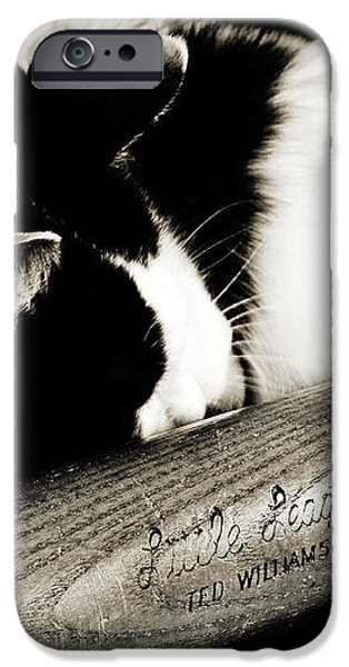 Cat and Bat iPhone Case by Andee Design