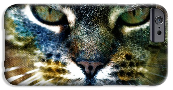 Moody Paintings iPhone Cases - Cat Art iPhone Case by Frank Tschakert