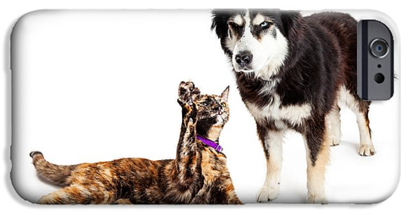 Huskies Photographs iPhone Cases - Cat Batting at Angry Dog iPhone Case by Susan  Schmitz