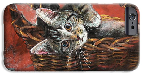 Basket iPhone Cases - Cat in the basket iPhone Case by Ylli Haruni