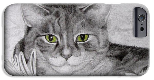 Animal Drawings iPhone Cases - Cat In The Cupboard iPhone Case by Karen Wood