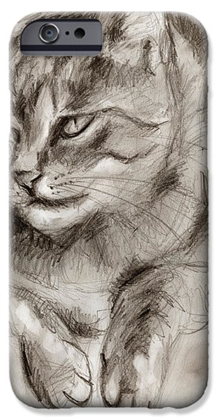 Cat Drawing Drawings iPhone Cases - Cat study drawing no one iPhone Case by Hiroko Sakai
