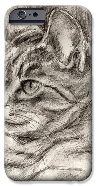 Cat Drawing Drawings iPhone Cases - Cat study drawing no three iPhone Case by Hiroko Sakai