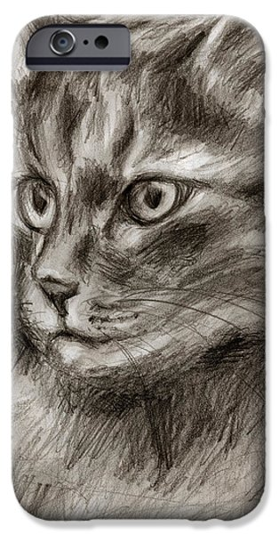 Cat Drawing Drawings iPhone Cases - Cat study drawing no two iPhone Case by Hiroko Sakai