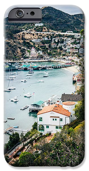 Pleasure iPhone Cases - Catalina Island Avalon Bay from Above Picture iPhone Case by Paul Velgos