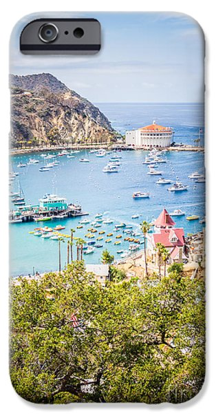 Pleasure iPhone Cases - Catalina Island Avalon Bay Vertical Photo iPhone Case by Paul Velgos