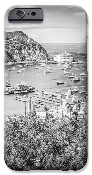 Pleasure iPhone Cases - Catalina Island Vertical Black and White Photo iPhone Case by Paul Velgos