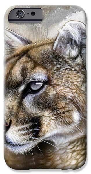 Catamount iPhone Case by Sandi Baker