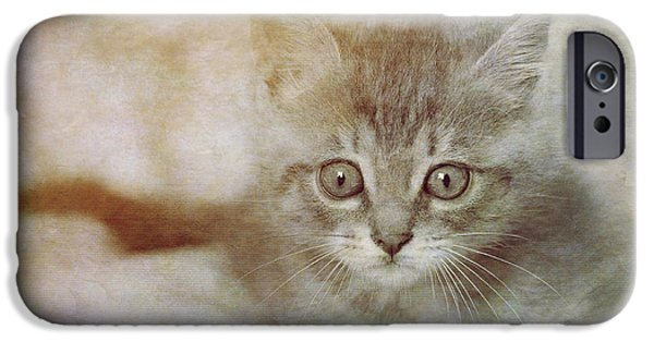 Sheets iPhone Cases - Cats Eyes #07 iPhone Case by Loriental Photography