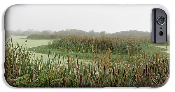 Mist iPhone Cases - Cattails iPhone Case by Clyde Dellinger