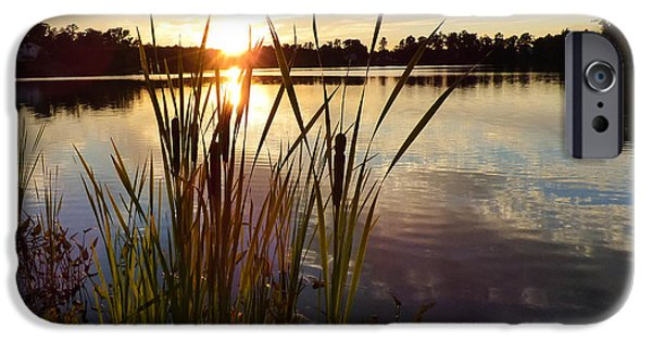 Jordan iPhone Cases - Cattails on Lake sunset iPhone Case by Pen TED