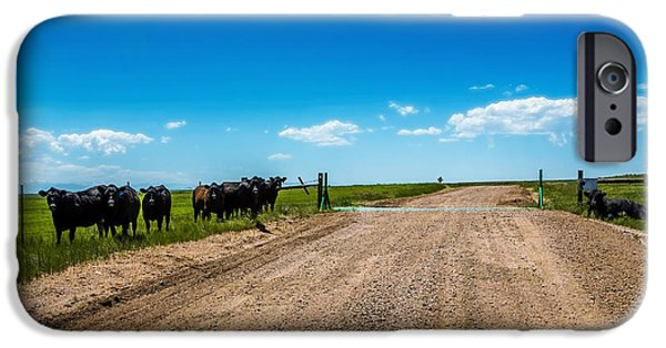 President iPhone Cases - Cattle Guard iPhone Case by Jon Burch Photography