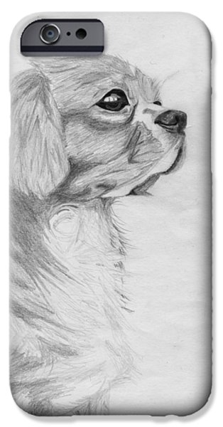 Cavalier iPhone Cases - Cavalier King Charles Spaniel 3 iPhone Case by David Smith