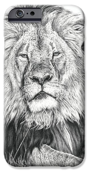 Animal Drawings iPhone Cases - Cecil The Lion  iPhone Case by Heidi Vormer