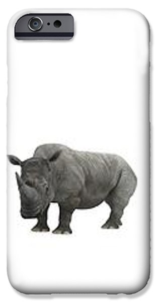 Cerapod Dinosaurs Compared To A Rhino iPhone Case by Walter Myers