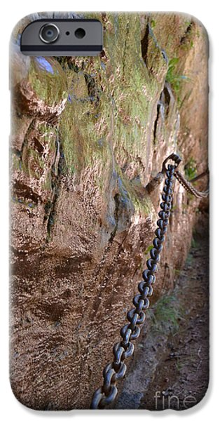 Red Rock iPhone Cases - Chains on Hike Lower Emerald Pools Zion iPhone Case by Heather Kirk