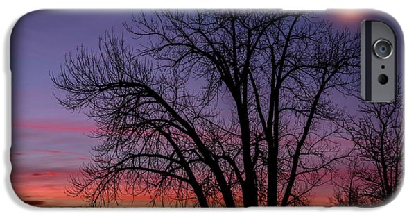 Tree Art Print iPhone Cases - Chatfield Moon At Sunrise iPhone Case by Darren  White