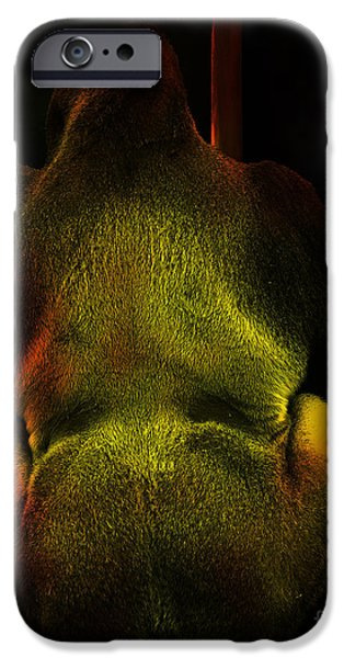 Chatroom Screen Name MildMannerGuy4U iPhone Case by Wingsdomain Art and Photography
