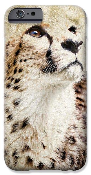 Fury iPhone Cases - Cheetah Feline II iPhone Case by Athena Mckinzie
