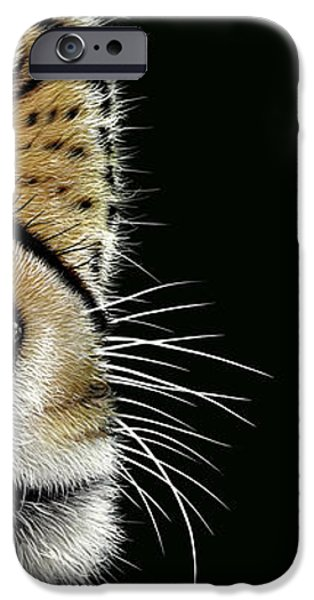 Cheetah iPhone Case by Jurek Zamoyski