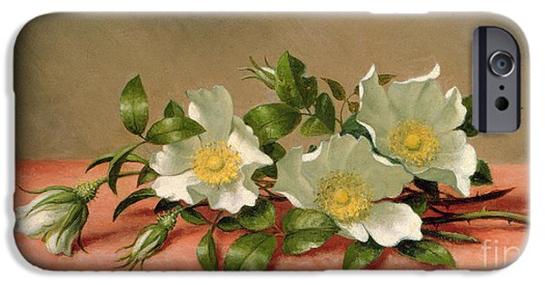 Florals iPhone Cases - Cherokee Roses iPhone Case by Martin Johnson Heade