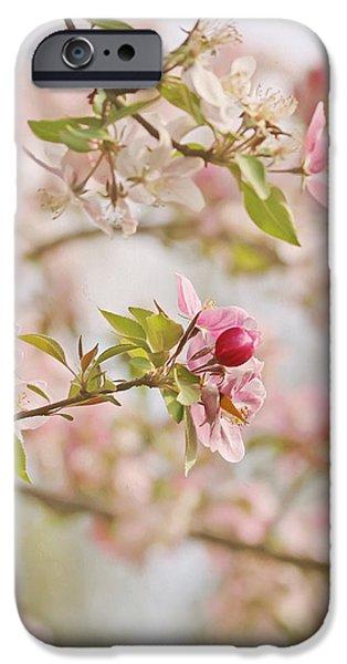 Cherry Blossom Delight iPhone Case by Kim Hojnacki