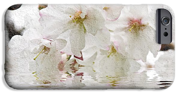 Fruit Tree iPhone Cases - Cherry blossom in water iPhone Case by Elena Elisseeva