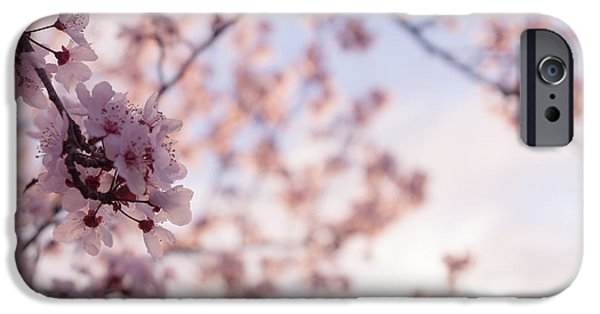 Cherry Blossoms iPhone Cases - Cherry Blossoms iPhone Case by Ana V  Ramirez