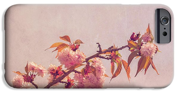 Cherry Art iPhone Cases - Cherry Blossoms iPhone Case by Wim Lanclus