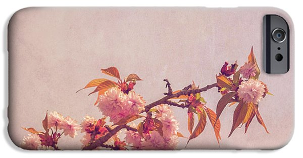 Cherry Blossoms Photographs iPhone Cases - Cherry Blossoms iPhone Case by Wim Lanclus