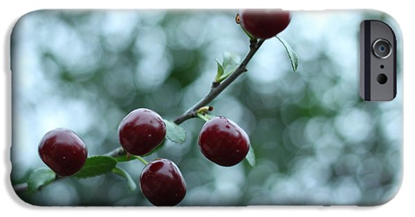 Cut-outs iPhone Cases - Cherry Constellation  iPhone Case by Igor Zharkov