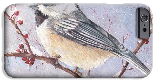 Maine Drawings iPhone Cases - Chickadee dee dee iPhone Case by Shana Rowe