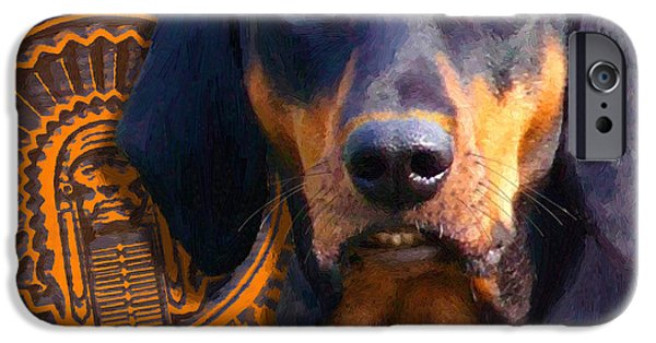 Dogs iPhone Cases - Chief iPhone Case by Doug Kreuger